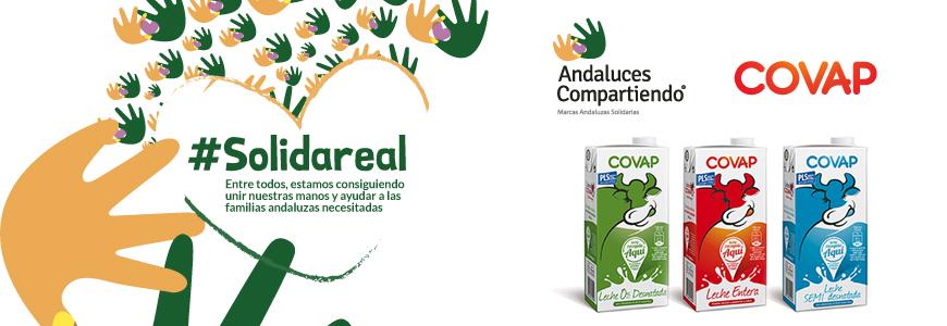 covap-colabora-con-andaluces-compartiendo-prestando-apoyo-social-a-mas-de-65.000-familias-andaluzas-en-2016
