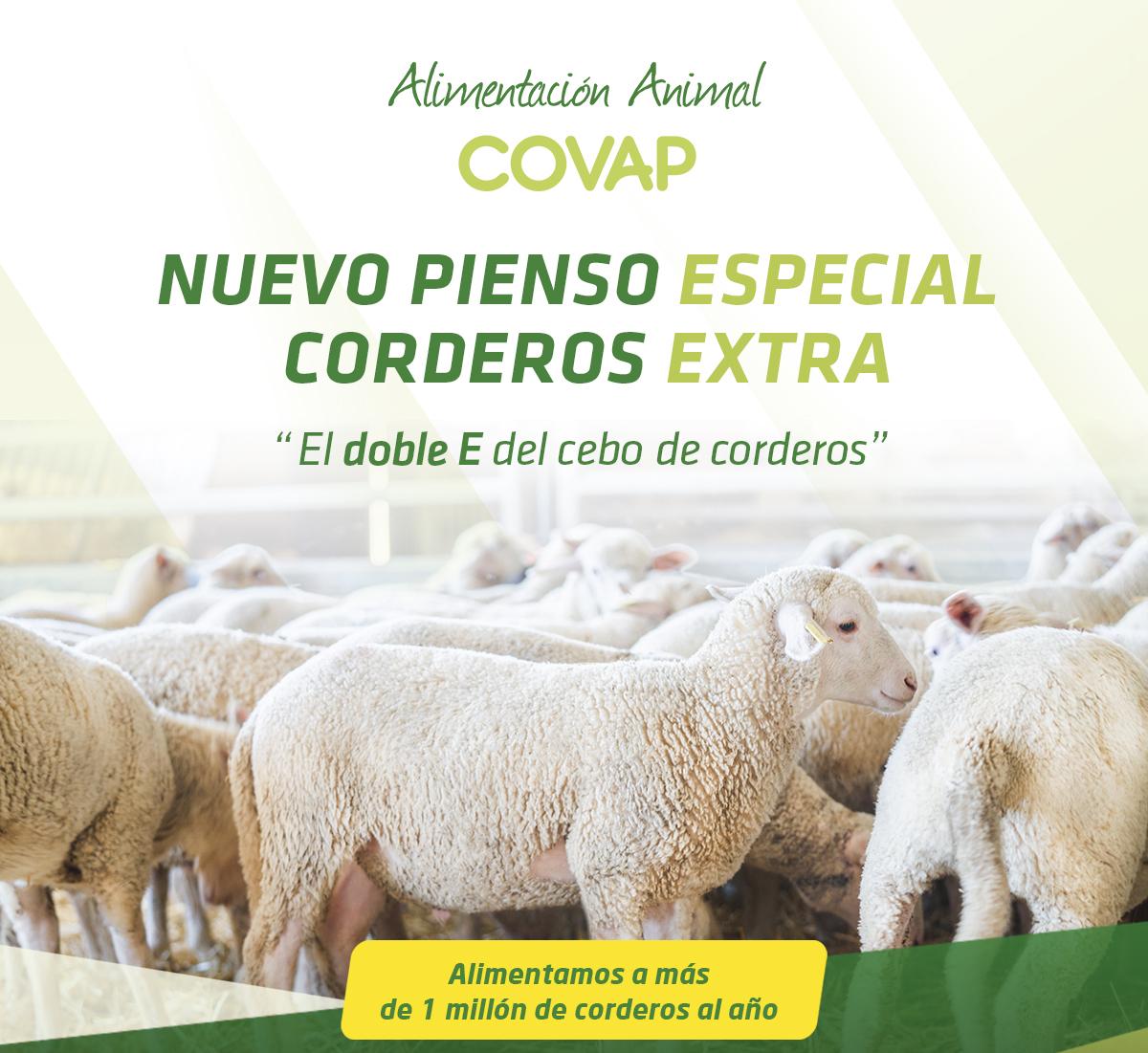 Doble E del cebo de corderos | COVAP
