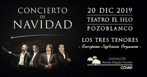 Concierto Navidad Fundación Ricardo Delgado Vizcaino