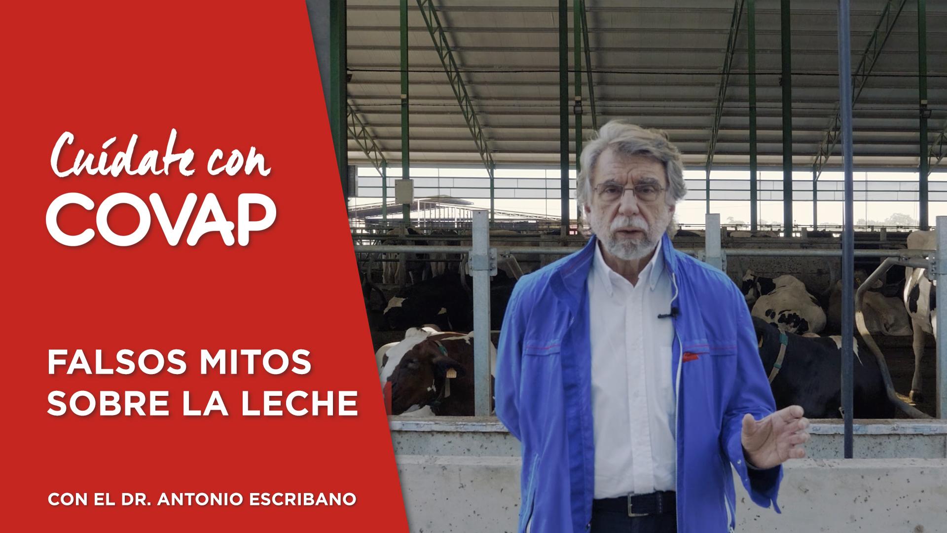 Cuidate con COVAP-Falsos mitos sobre la leche